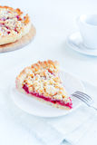 Shortcrust fruit pie Royalty Free Stock Photos