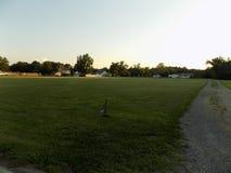 Shortersgebied in Benedict Maryland Royalty-vrije Stock Fotografie