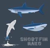 Shortfin Mako Cartoon Vector Illustration Royalty Free Stock Photography