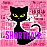 Shorthair猫代表似猫的少女和纯血统的动物 库存例证