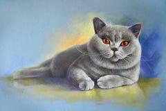 Shorthair de ingleses do gato da pintura imagem de stock