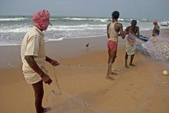 Shorting Fish Stock Photos