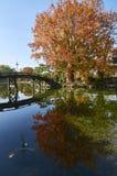 Shosei-EN κήπος Ε στο Κιότο Ιαπωνία Στοκ εικόνες με δικαίωμα ελεύθερης χρήσης