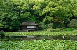 Shosei trädgård, Kyoto, Japan fotografering för bildbyråer