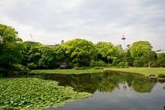 Shosei trädgård, Kyoto, Japan royaltyfria bilder