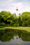 Shosei trädgård, Kyoto, Japan royaltyfri fotografi