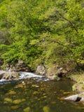Shosenkyo Gorge in fresh green in Kofu, Yamanashi, Japan Stock Images