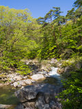 Shosenkyo Gorge in fresh green in Kofu, Yamanashi, Japan. Shosenkyo gorge is located in the outside of Kofu City, is one of Japan's most beautiful gorges. It is royalty free stock photo