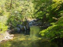 Shosenkyo klyfta i ny gräsplan i Kofu, Yamanashi, Japan royaltyfria foton