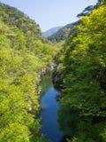 Shosenkyo wąwóz w świeżej zieleni w Kofu, Yamanashi, Japonia fotografia stock