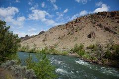 Shoshone River Royalty Free Stock Photo