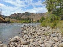 Shoshonerivier in Cody Wyoming stock foto's