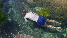 A shot from above a diver. A shot of a diver swimming on a clear water. Rocks and mangroves are close to the diver stock video footage