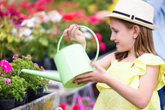 Beautiful girl watering the plants in the greenhouse. royalty free stock images