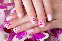 Shot beautiful manicure with flowers on female fingers. Nails design. Close-up Royalty Free Stock Photography