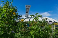 Montreal's Olympic Stadium as seen from behind tall trees and flowers stock image