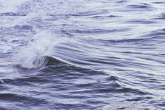 Shot of a beautiful wave in the sea. A shot of a beautiful wave in the sea royalty free stock images