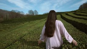 Walking woman in big maze stock footage