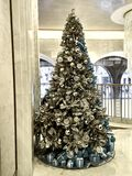 Shot of a big decorated Christmas tree. With presents on the floor royalty free stock images