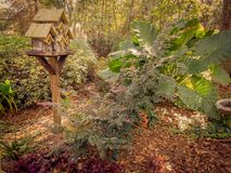 Shot of a birdhouse in the woods Stock Photography