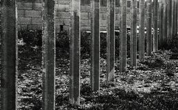Row of cement columns. Shot in black and white detail on the sculpture on the facade of this historic building representing some characters / animals / plants Stock Photo