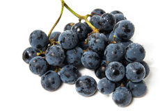 A shot of a bunch of black grapes. Royalty Free Stock Image