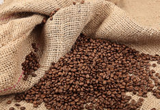 Shot of Coffee Beans in a Bag Royalty Free Stock Images