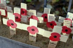 Remembrance Day Poppies on Crosses. Shot of a collection of poppies on crosses for remembrance day against a blurred background stock image