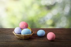 Shot of decoration Happy Easter holiday Stock Images