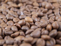 Grains of coffee Royalty Free Stock Photos