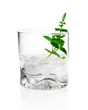 Shot of gin, vermouth or vodka. Served chilled over ice in a tumbler garnished with fresh herbs on a white background Stock Images