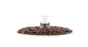 Shot glass with coffee beans Royalty Free Stock Photos