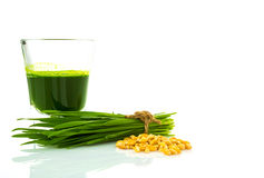 Shot glass of wheat grass with fresh cut wheat grass and wheat Stock Images