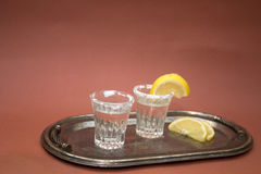 Shot glasses with tequila Royalty Free Stock Photo