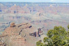 Grand Canyon in Spring Royalty Free Stock Photography