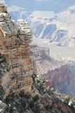 Grand Canyon in Spring Stock Photography