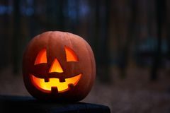 Shot of Halloween pumpkin jack head royalty free stock images