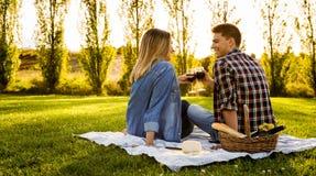 Making a summer picnic Royalty Free Stock Photo