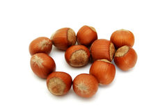 Shot of hazelnuts Royalty Free Stock Photos