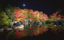 Autumn leaves and waterfall of Japanese garden at night. royalty free stock photo