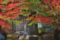 Autumn leaves and waterfall of Japanese garden at night. royalty free stock images