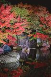 Autumn leaves and waterfall of Japanese garden at night. royalty free stock photos