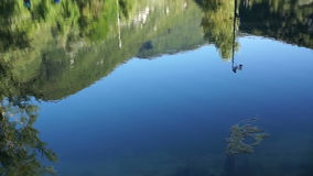 Shot of lake scenic in summer. Blurred nature unfocused background. stock video