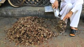 Shot of a man filling spices in polybags at spice market in Dubai, United Arab Emirates stock footage
