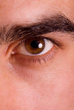 Shot of man's eye Stock Images