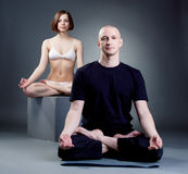 Shot of meditating yoga trainers, on gray backdrop Royalty Free Stock Photo