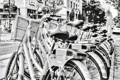 Bicycle Row Royalty Free Stock Photos