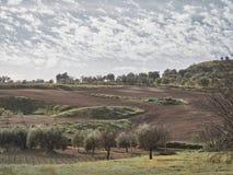 Shot of a rural environment royalty free stock image