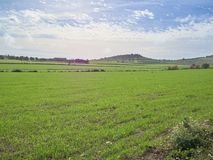 Shot of a rural landscape in a sunny day stock image