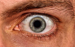Shot of scared man eye Stock Images
